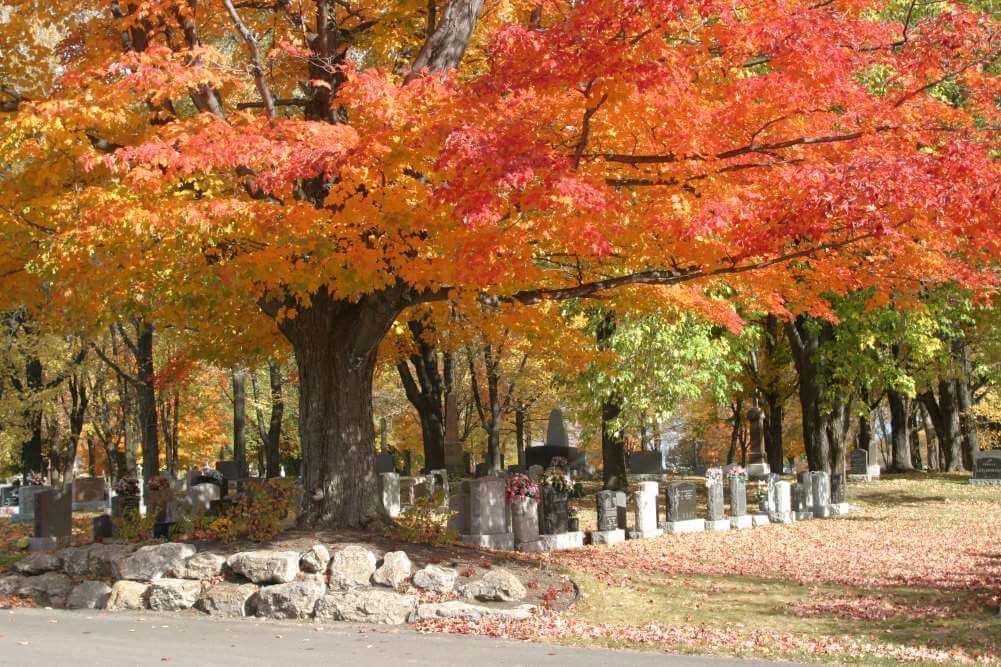 Corporation du cimetière Mont-Marie - Lauzon-automne